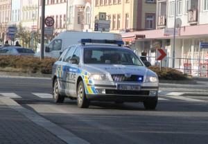 policie _aleso