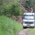České Švýcarsko, 29. 6. 2018 –Návštěvníci Národního parku České Švýcarsko se v hlavní turistické sezóně setkají se zvýšeným pracovním provozem na některých lesních cestách. Příčinou je zpracovávání a odvoz smrků […]