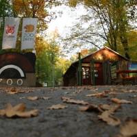 zoo podzim_aleso