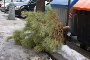 vanocni stromek polelnice