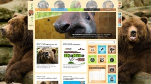 zoo_new_web