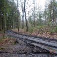 """Občané a návštěvníci města, kteří k procházkám často využívají lokalitu na Kvádrberku, jistě postřehli, že jsou zde lesní cesty poškozené. To způsobila většinou firma, která opravovala vyhlídkové místo """"Labská stráž'. […]"""