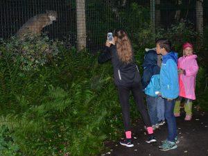 Noc v zoo