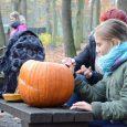 Jste mistři ve dlabání halloweenských dýní a rádi se bojíte? Pak rozhodně nesmíte 3. listopadu 2018 chybět v děčínské zoo. Ta se totiž opět po roce promění ve strašidelnou a […]