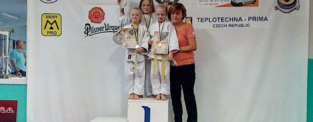 Velká cena Teplic patří k nejsilněji obsazeným turnajům, na kterých si měří své síly ta nejmladší generace judistů. Letos se na ni sjelo celkem 189 malých judistů ze sedmnácti oddílů. […]