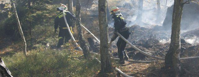 15. 10. 2018 4:17 Čtyři hasičské jednotky vyjely kpožáru lesa u Hřenska. Hořelo na ploše přibližně 100x40m. Hasiči nasadili kyvadlovou dopravu vody a požár lokalizovali v7:28 12. 10. 2018 12:00 […]