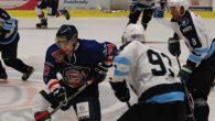 V devátém kole druhé hokejové ligy zavítali Medvědi na mostecký led, kde se snažili odčinit debakl z domácího ledu. Pár minut před koncem sahali po třech bodech, nakonec však prohráli […]