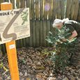 Víte o tom, že i stromy mají svůj svátek? Den stromů připadá na 20. října a vČeské republice se začal slavit od roku 1906. Tento den má připomenout, jak důležité […]